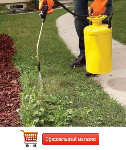 уничтожение сорняков на клубнике